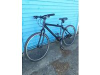 15inch frame Marin bike. Free delivery