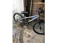Apollo Spektor bmx/mountain bike