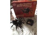 Black widow radio controlled spider