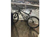 Adult Hybrid Mountain Bike