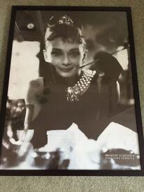 Audrey hepburn framed photo