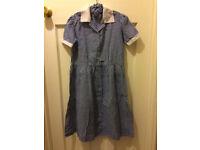 School dress (blue gingham) & hair ruffle