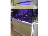 White Aqua one 400 marine/tropical fish tank aquarium with setup (delivery/installation)