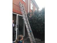 12 rung ladders