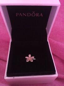 Pandora Dazzling Daisy Ring