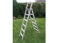 5 Tread Metal step ladder
