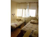 Large Twin/Double Room Avail in East Acton