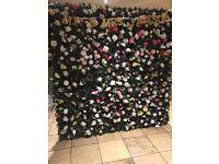 Flower wall 2m x 2m