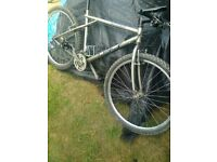 bike for sale - retro gt timberland bike - ready to ride !