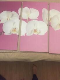 Set of three canvas pictures