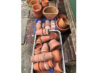 Clay garden plant pots