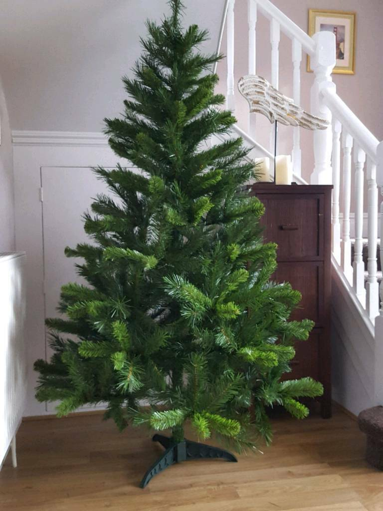 Christmas Tree Swiss Fir