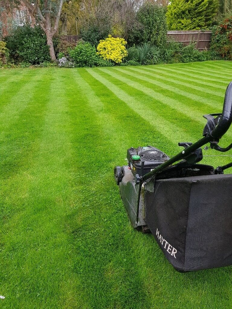 Lawn mowing / Treatments