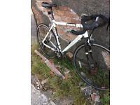 Barracuda black Finn road bike