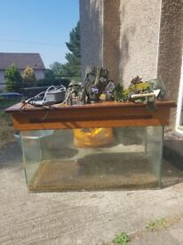 3ft fish tank with lights and ornaments plus plants