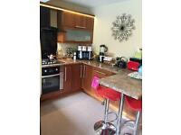 ***MODERN & ATTRACTIVE 4/5 BEDROOM HOUSE-CROOKES, S10***