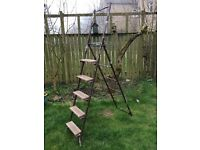 METAL STEP LADDER THAT CONVERTS INTO A 12 FOOT LADDER