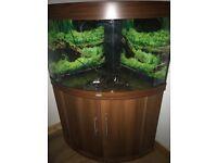 Juwel Trigon Fish Tank 190L