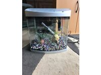 35l fish tank full set up with light filter heater gravel ornament all clean and all work in pic