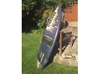 Kids Summer surf board/ Short Board
