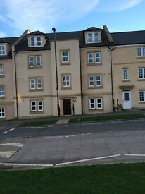 Spacious 1 Bedroom Flat for rent in Hopefield Development in Bonnyrigg - long term applicants only