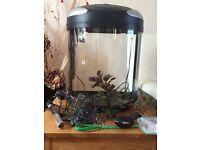 Interpet FISH POD aquarium fish tank