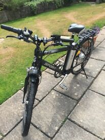 Lifecycle Electric Sports Bike