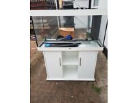 Juwel rio 350 litre fish tank and stand in excellent condition