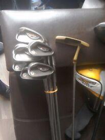 Golf club set / ping .callaway .adams
