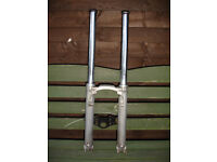 BMW R80RT 1985 Brembo Motorcycle forks bought for a project