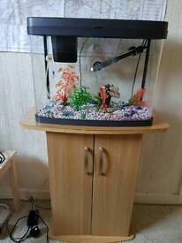 40L PANORAMA FISH TANK AND STAND