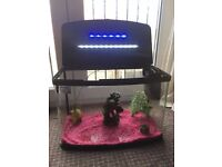 Cold/Tropical fish Tank for Sale