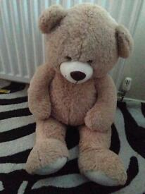 Large brown teddy
