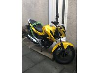 HONDA CB125F (GLR) MOTORCYCLE - GREAT, NEARLY NEW BIKE FOR LEARNING ON OR COMMUTING