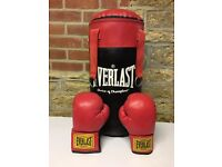 Everlast Punchbag and Boxing Gloves