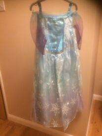 Elsa Frozen Dress and Shoe Set