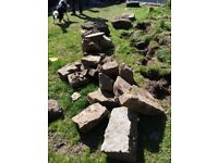 Free Rocks from rockery