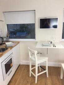 Studio Flat to Rent in Ashford