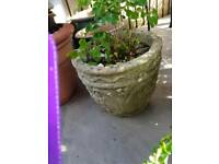 Heavy stone planter