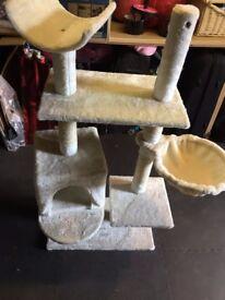 Cat Climber / Activity Centre