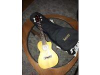 Lani mango wood electro acoustic concert ukelele