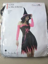Halloween Sexy Sorceress Fancy Dress Costume Pink Or Green (Small, Medium And Large Available)