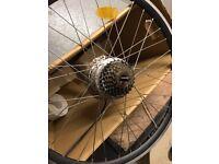 Electric Bike Motor 250W in disc rear wheel - hardly used