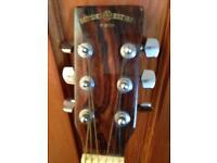 Guitar Suzuki 335