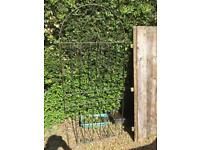 Metal gate 6 ft
