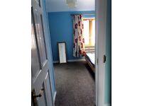 Single Room to share near Chadwell Heath Station