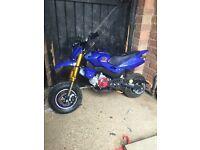 Pit bike 50cc super motard