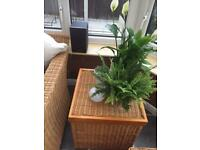 Pair of Wicker Square Storage Boxes