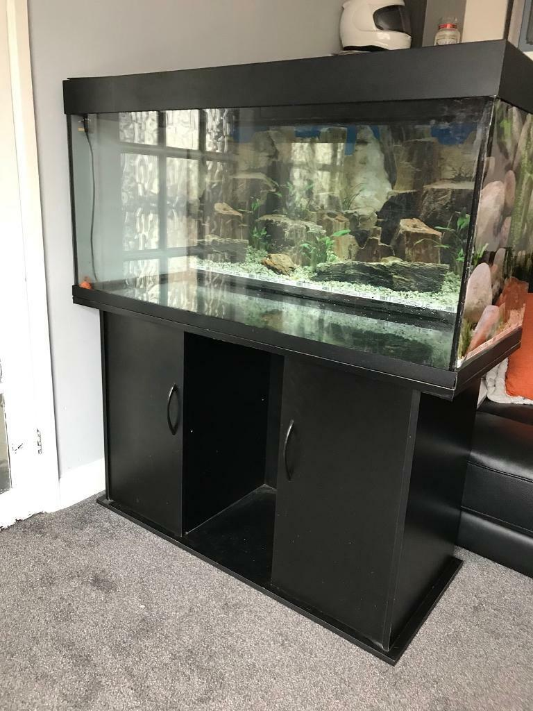 Juwel 4ft tank, cabinet and lights