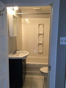 Spacious 3 bedroom, 1 1/2 bath in Hintonburg